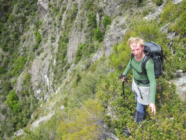 Scrambling down the Wakefield waterfalls, probably not a recommended descent route