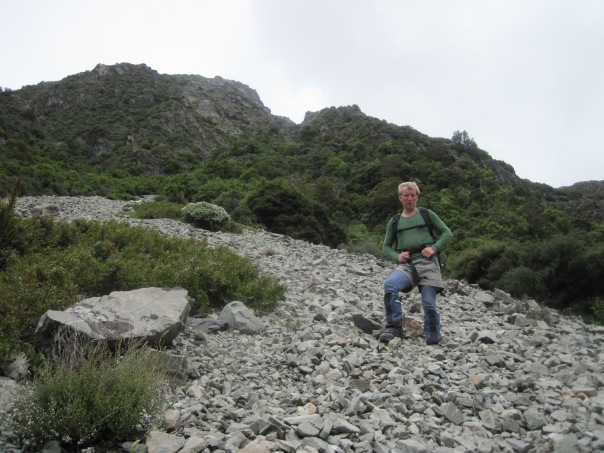 We descended the Wakefield waterfalls, the steep vegetated bluffs behind David.