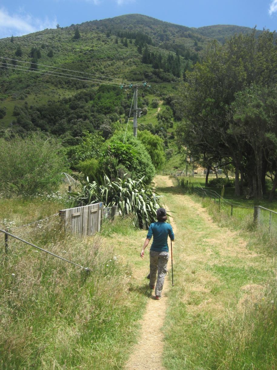 Walking through some farmland.