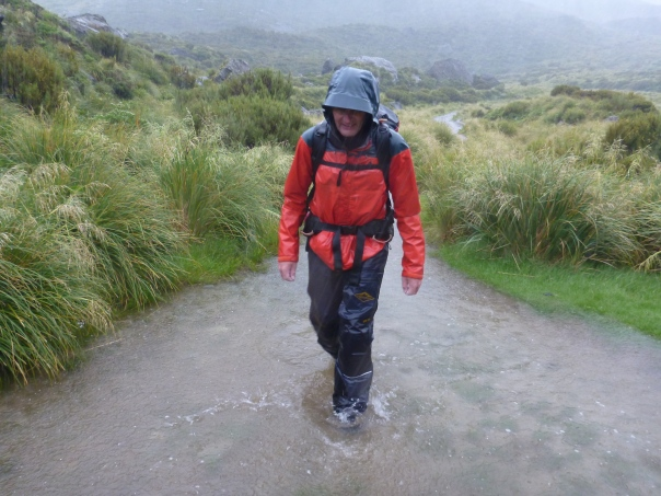 The Hooker Lake track was more of a river on the way out than a track.  We did not care as were completely wet anyway.