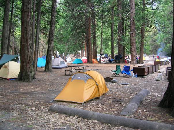 My kiwi designed 'MACPAC' tent in Camp 4, Yosemite valley.