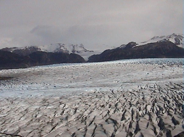 The magnificent Gray Glacier