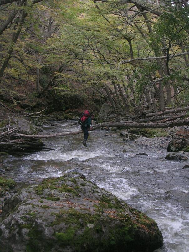Crossing a stream on a fallen log