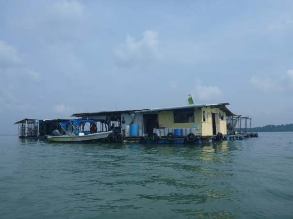 A 'Kelong' or floating fish farm.