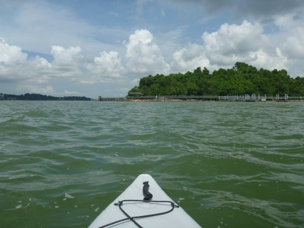 The tide was so low we had to paddle a long way off Chek Jawa Marine Reserve on Pulau Ubin.