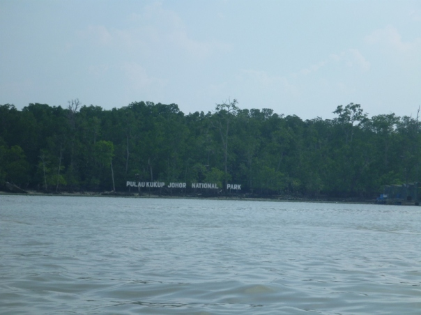 Looking across the strait to Pulau Tekukor (Tekukor Island) - the worlds second largest uninhabited mangrove Island.