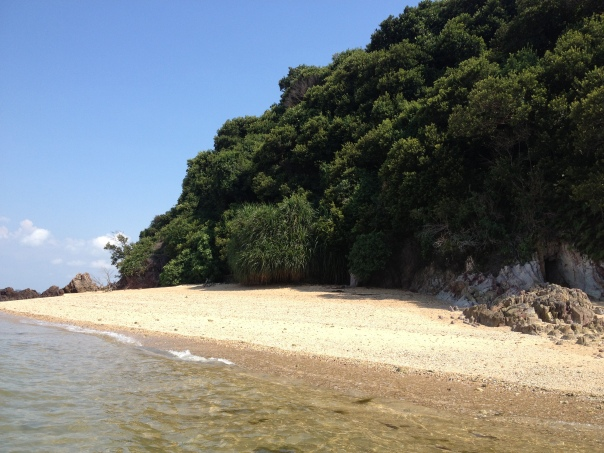 A small beach on Pulau Jong.