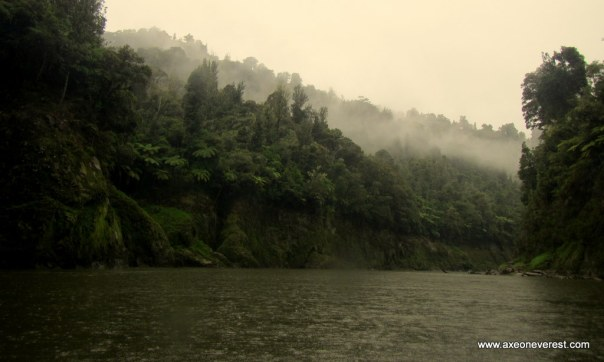Low could lines the banks of the Whanganui river as we paddle in the rain